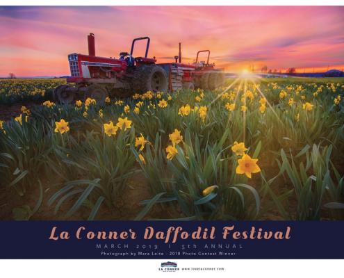 la_conner_daffodil_festival_2019
