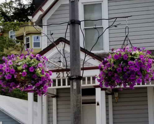 flower baskets la conner