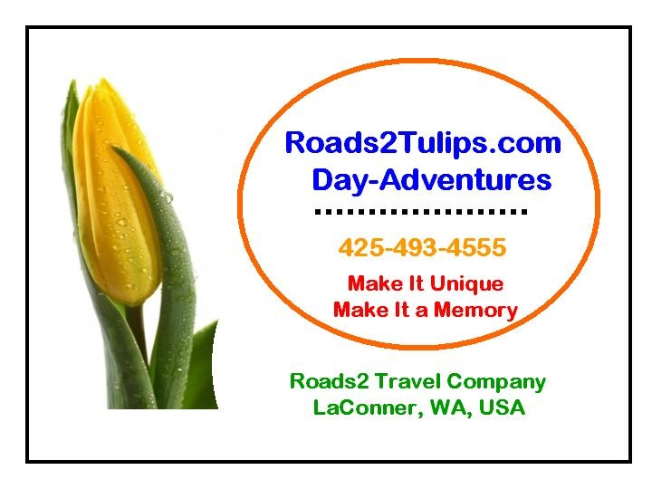 roads_2_tulips_tours